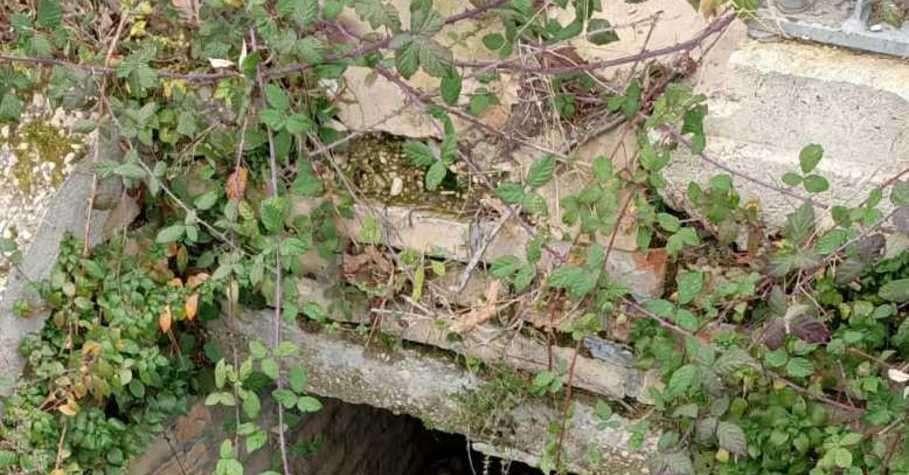 tortoreto,-il-fosso-cimitero-e-pericolosodi-matteo:-«ostruito-e-quasi-scomparso»