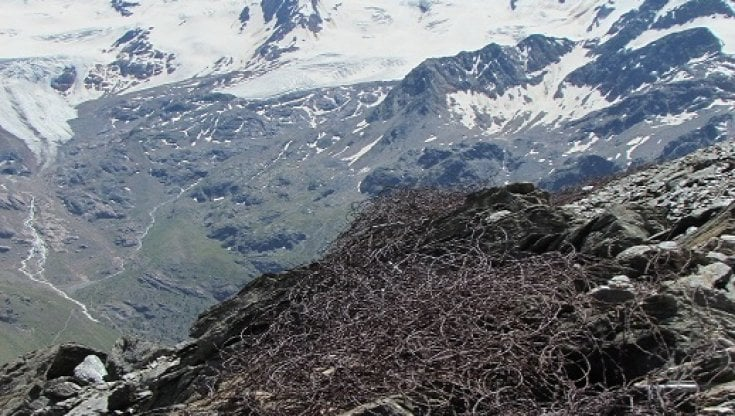 valanga-uccide-due-scialpinisti-in-alto-adige