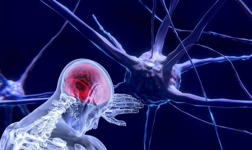 ospedale-l'aquila:-nuovo-pacemaker-cerebrale,-cura-all'avanguardia-per-il-parkinson