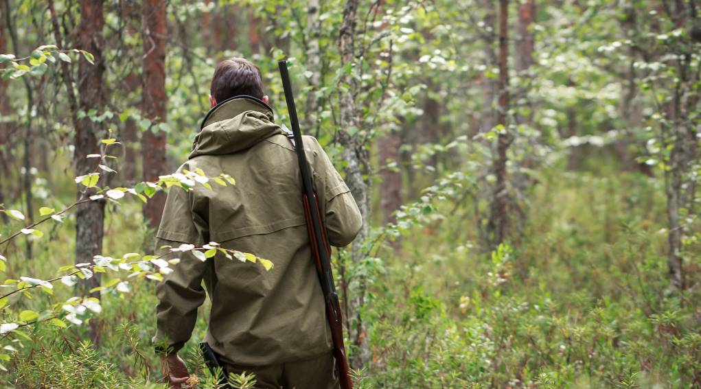 """caccia:-wwf,-""""pre-aperture-in-molte-regioni-sono-una-vergogna"""""""