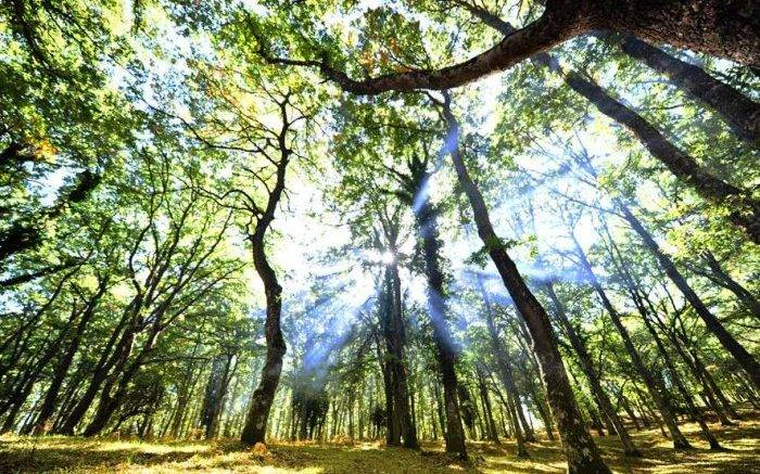energia:-abruzzo-seconda-in-italia-per-le-migliori-performance-climatiche
