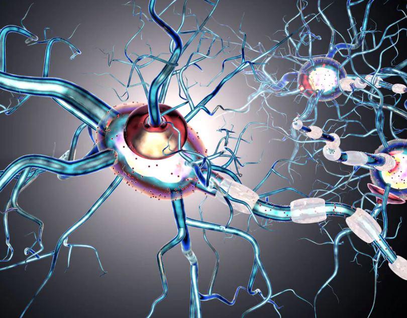 """sclerosi-multipla,-difensore-civico-abruzzo:-completato-iter,-""""siponimod""""-diventa-gratuito"""