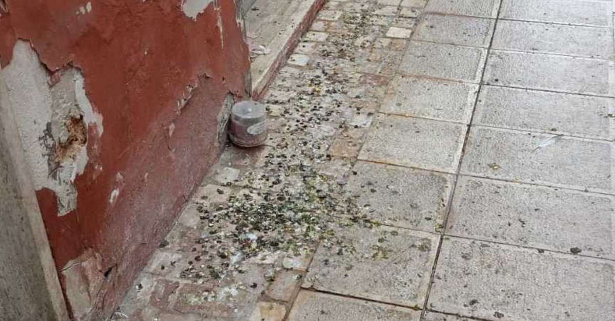 centro-storico-invaso-dai-piccioni